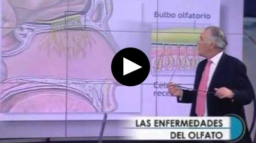 Dr. Néstor Galindo: Recuperación del Olfato